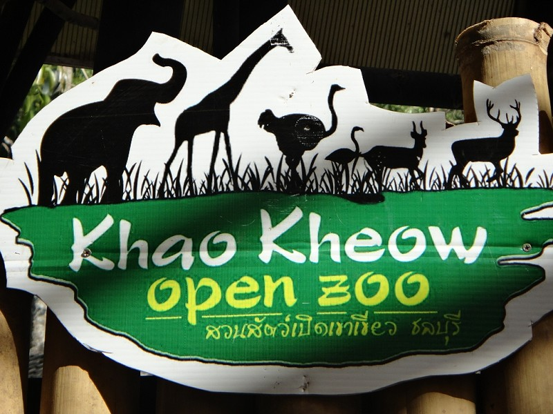 Khao Kheow Open Zoo Pattaya