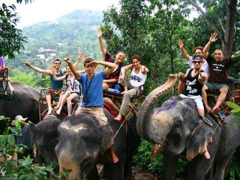Elephant trekking Pattaya 1hr